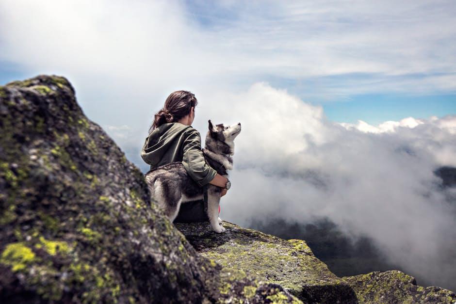 Blick ins Tal mit Hund