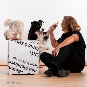 give me five, Karin Immler mit den Hunden