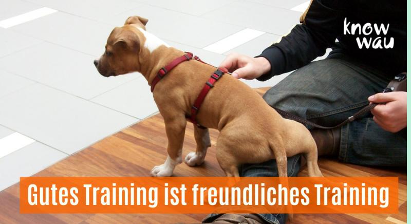 Gutes Training ist freundliches Training