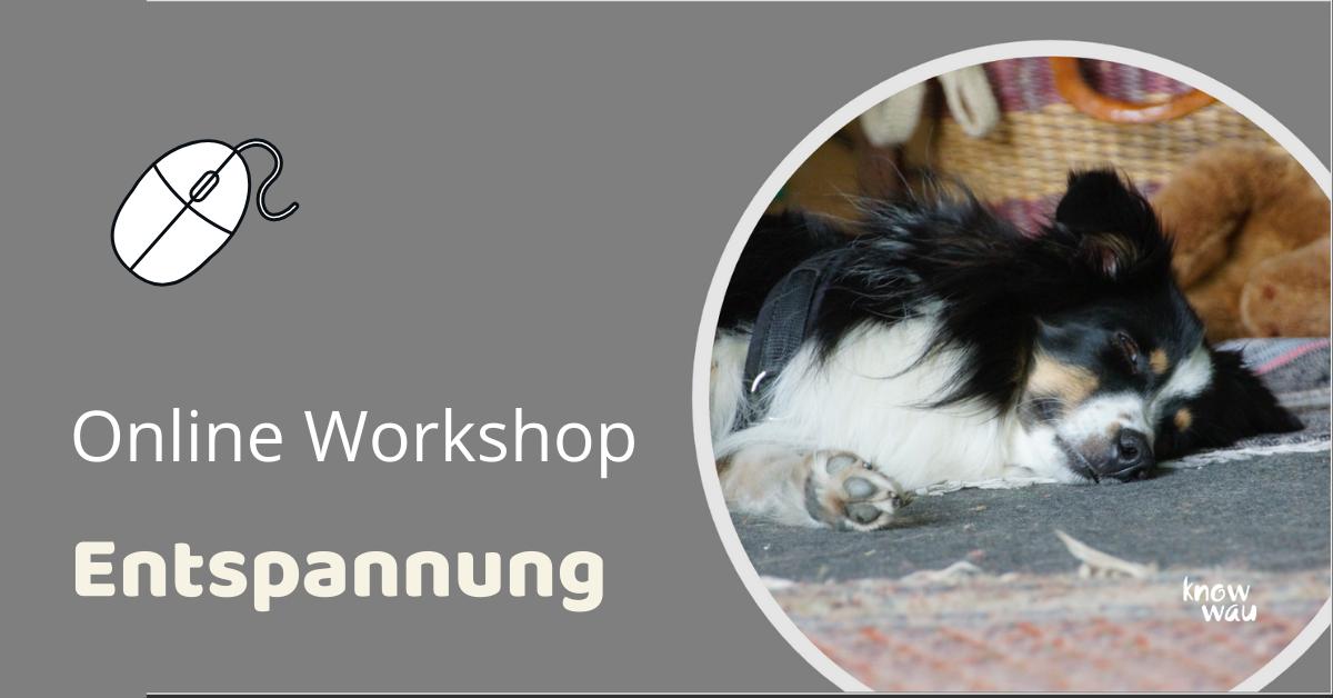 Entspannung Workshop