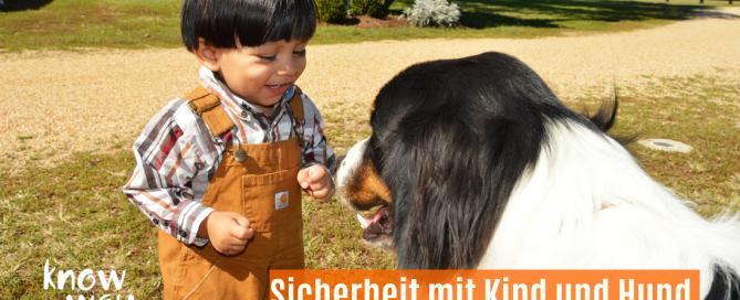 Kind freundet sich mit Hund an